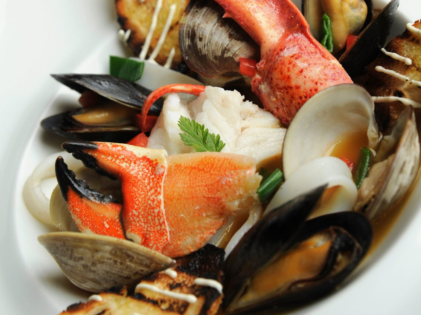 City Dining Eat Hotels Waterfront food dish plate cuisine mussel meal Seafood fish asian food bouillabaisse hors d oeuvre produce sliced containing arranged