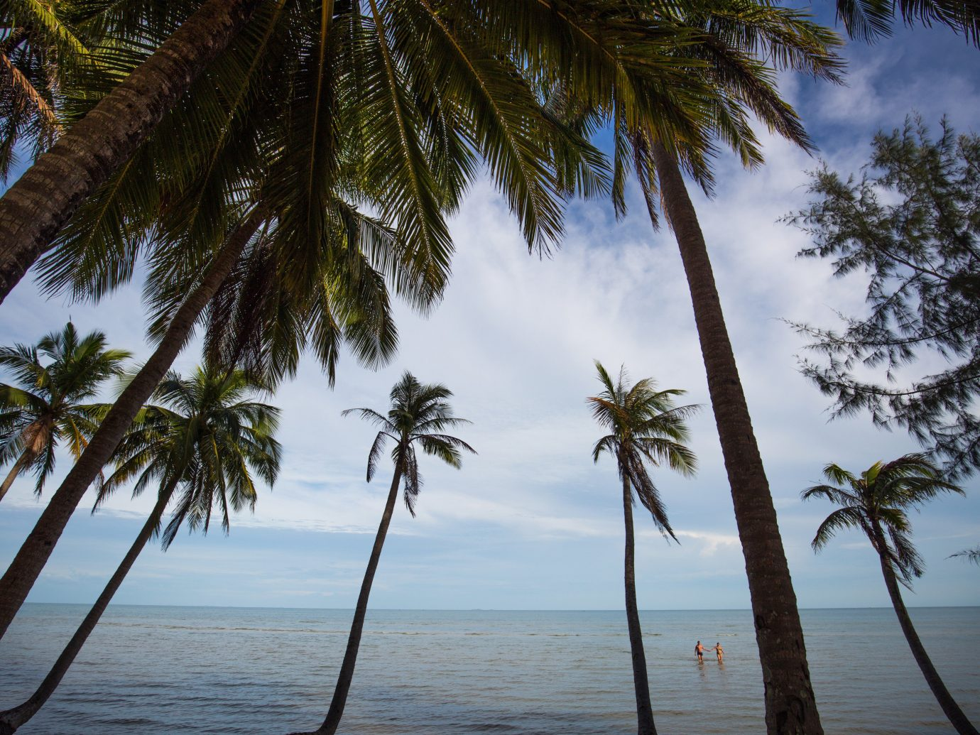 Secret Getaways Trip Ideas tree water palm outdoor sky plant Beach palm family body of water tropics Sea Lake Ocean vacation caribbean arecales land plant woody plant Coast flowering plant lined shore sandy shade