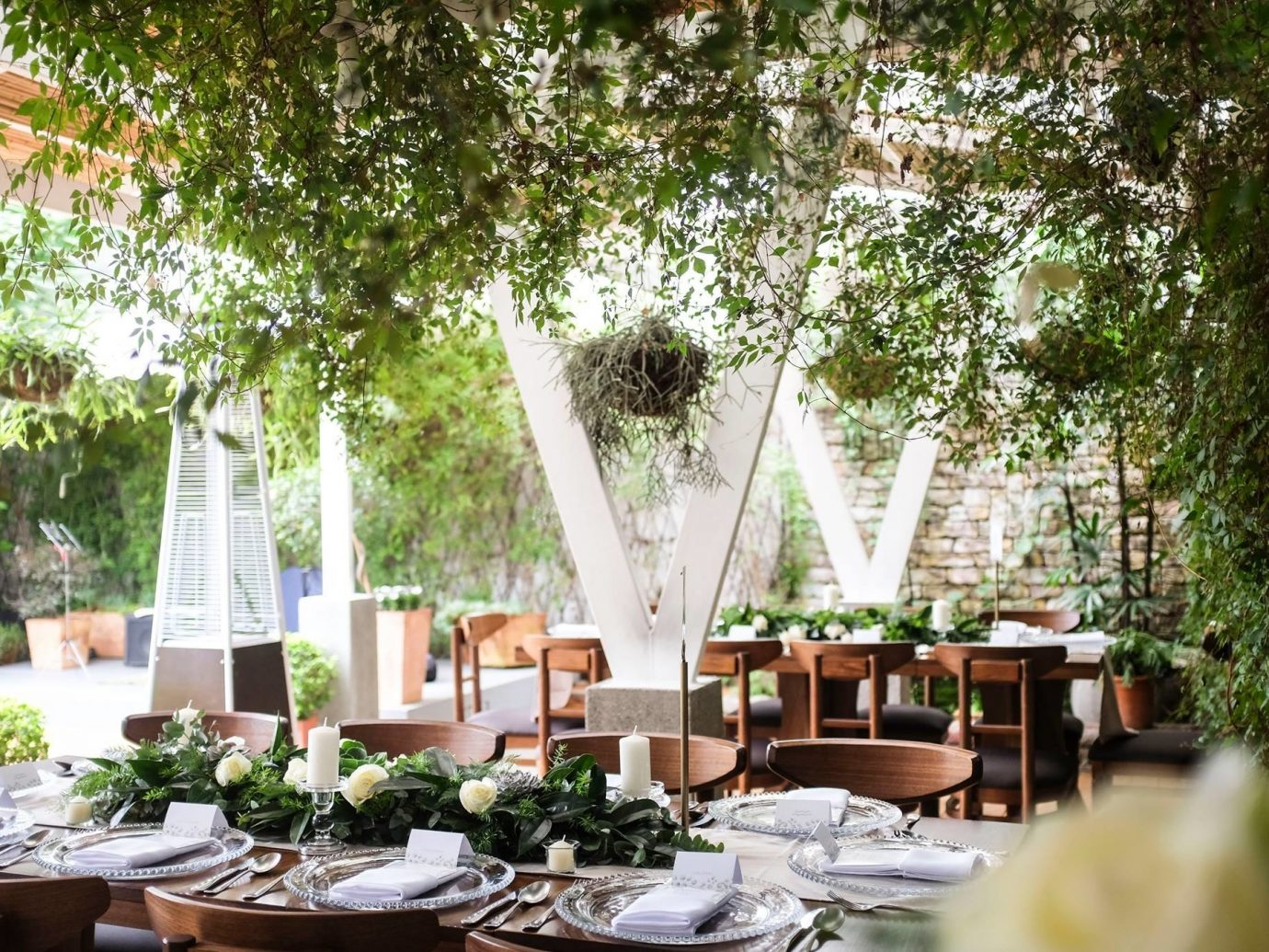 Food + Drink Trip Ideas tree table outdoor floristry flower arranging centrepiece backyard function hall ceremony Dining floral design outdoor structure plant interior design plantation flower restaurant banquet tablecloth meal furniture Garden several dining table
