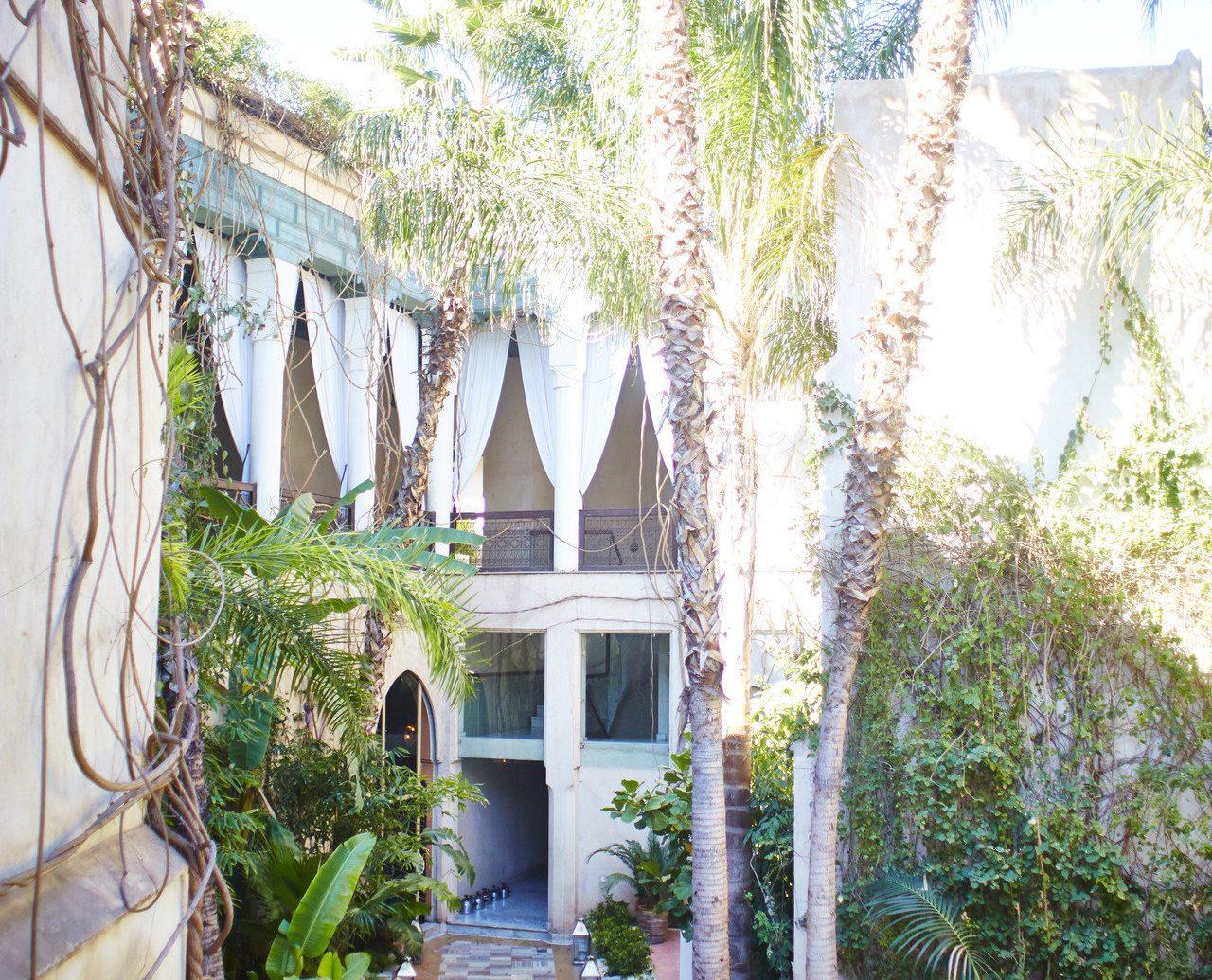 Influencers + Tastemakers Style + Design Travel Shop Trip Ideas tree property outdoor estate Courtyard Resort home hacienda mansion Villa Garden plant backyard