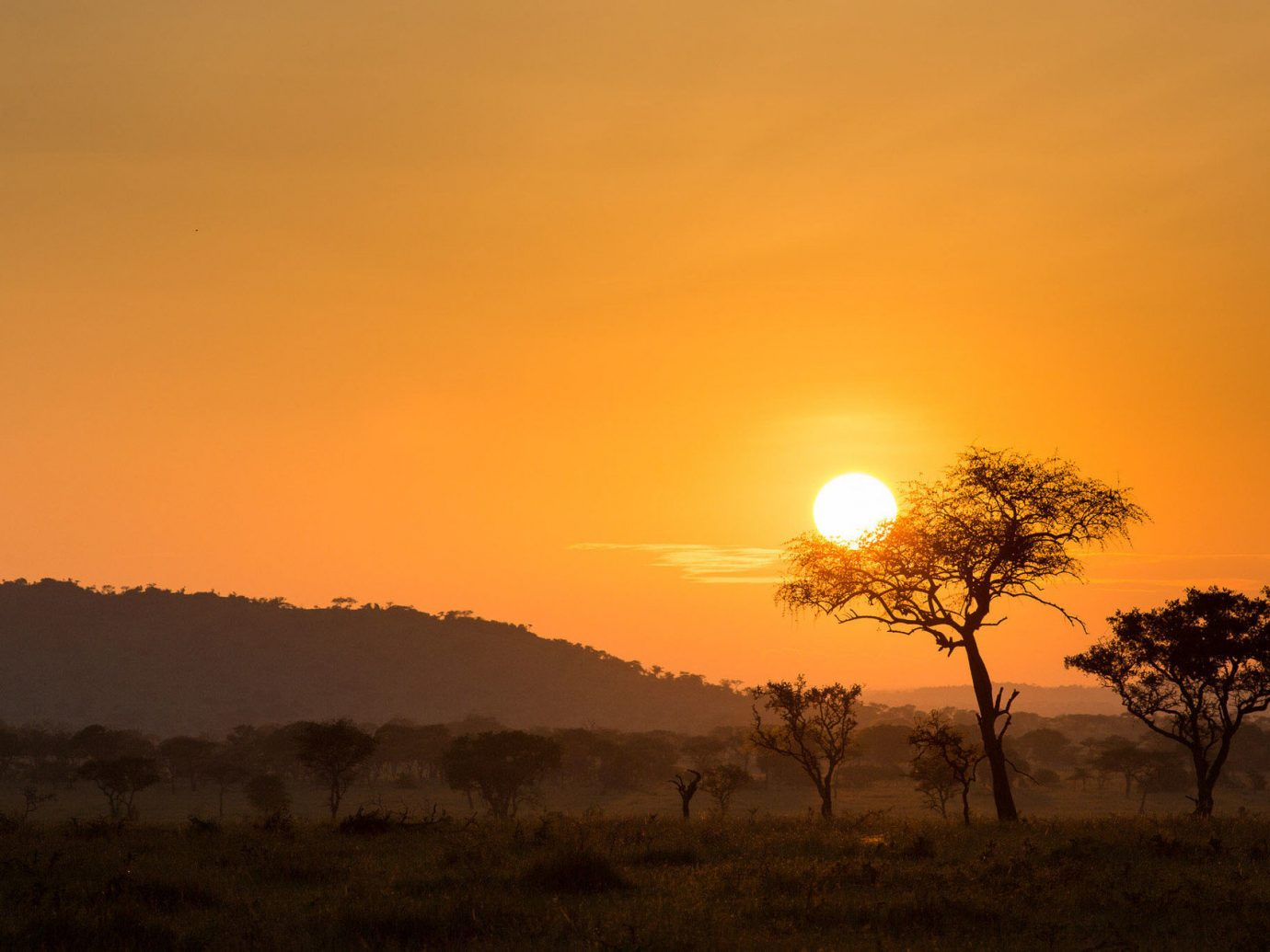 Trip Ideas sky outdoor grass Sunset Nature sunrise atmospheric phenomenon horizon red sky at morning dawn afterglow natural environment morning savanna field evening dusk Sun sunlight plain prairie astronomical object tree plant distance day