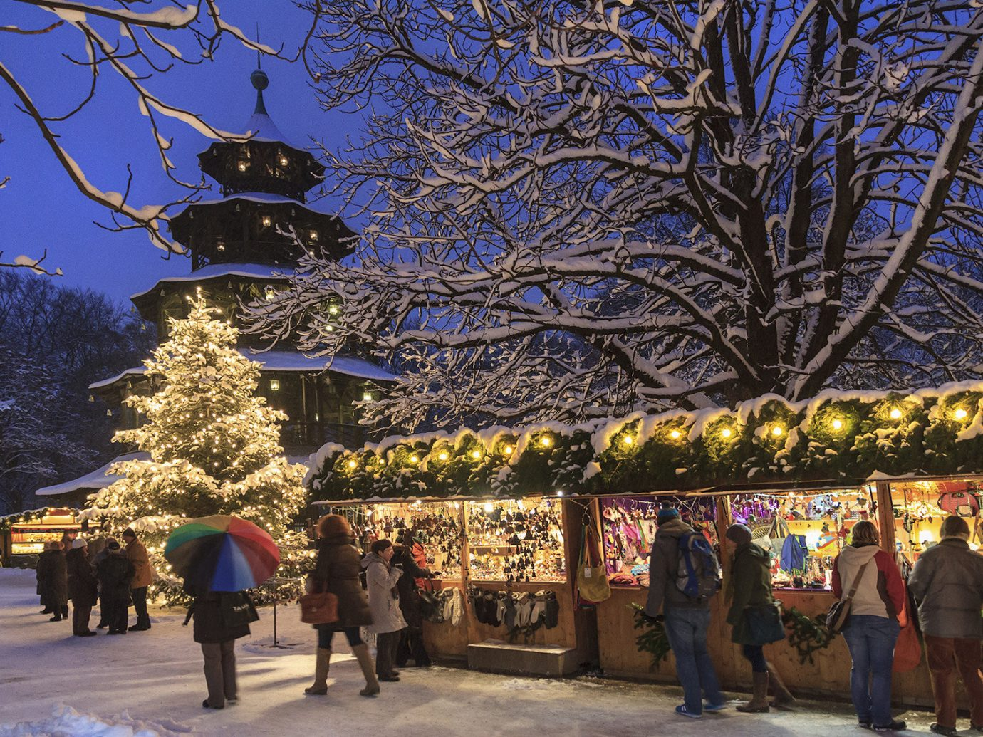 Trip Ideas tree outdoor people group flower evening Christmas christmas decoration crowd line several
