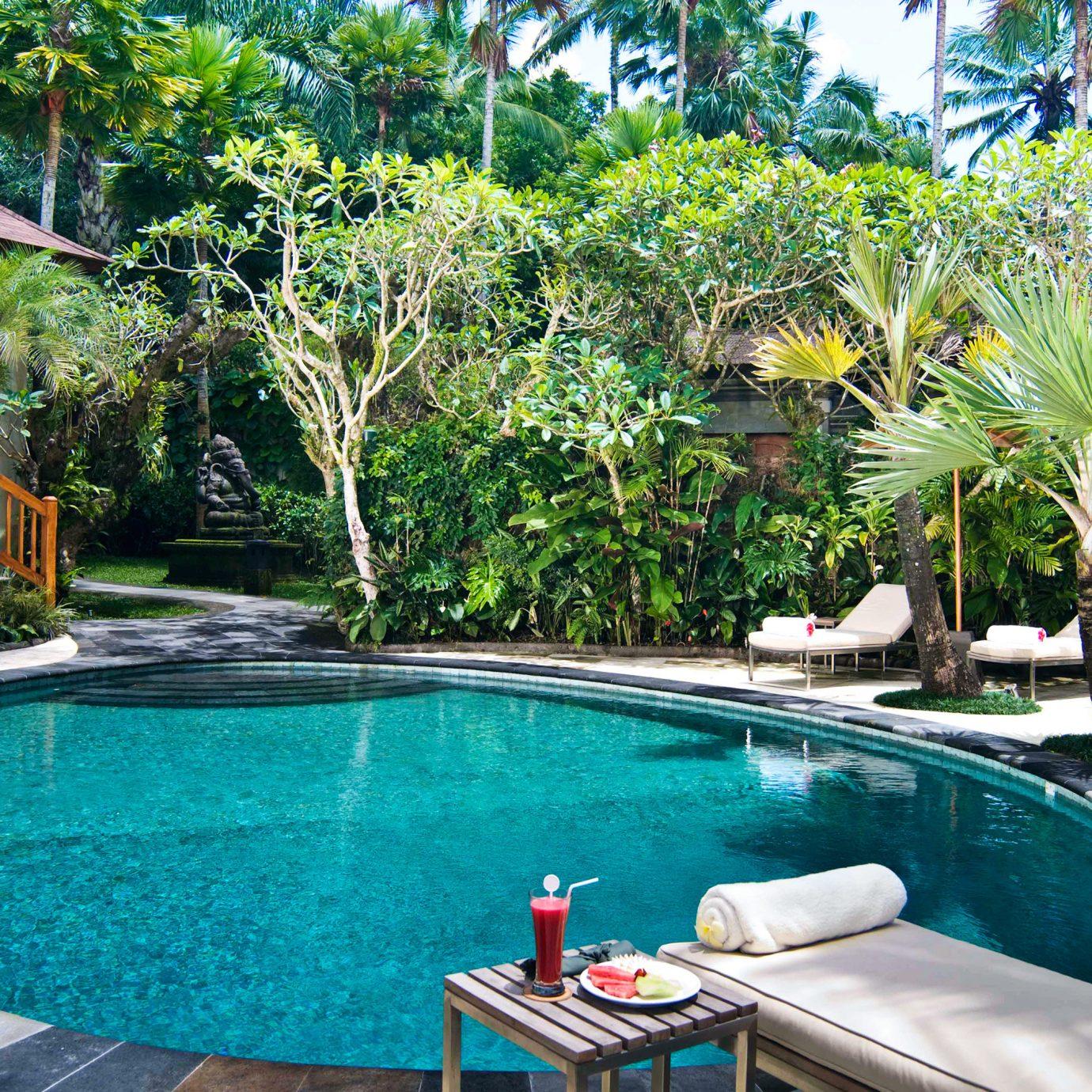 Adventure Pool Safari tree water swimming pool property Resort leisure backyard Villa eco hotel condominium caribbean swimming