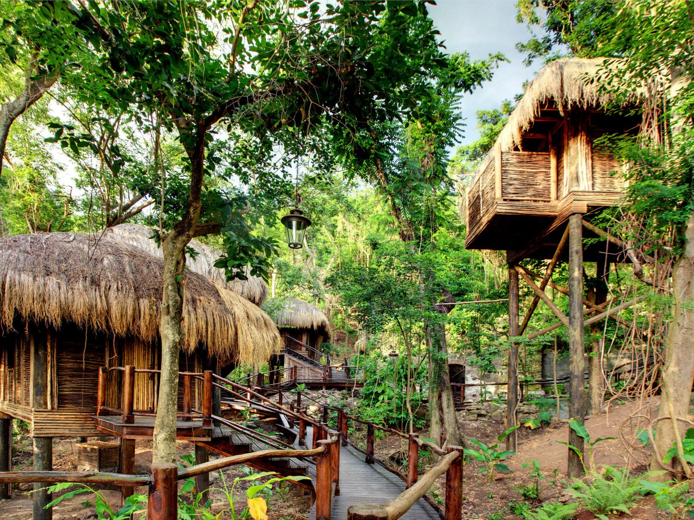 Architecture Buildings Design Exterior Family Hotels Living Luxury Resort Romance tree outdoor hut building botany Jungle wooden Forest rural area Village rainforest wood house flower tree house Garden outdoor structure old plant area surrounded lush wooded