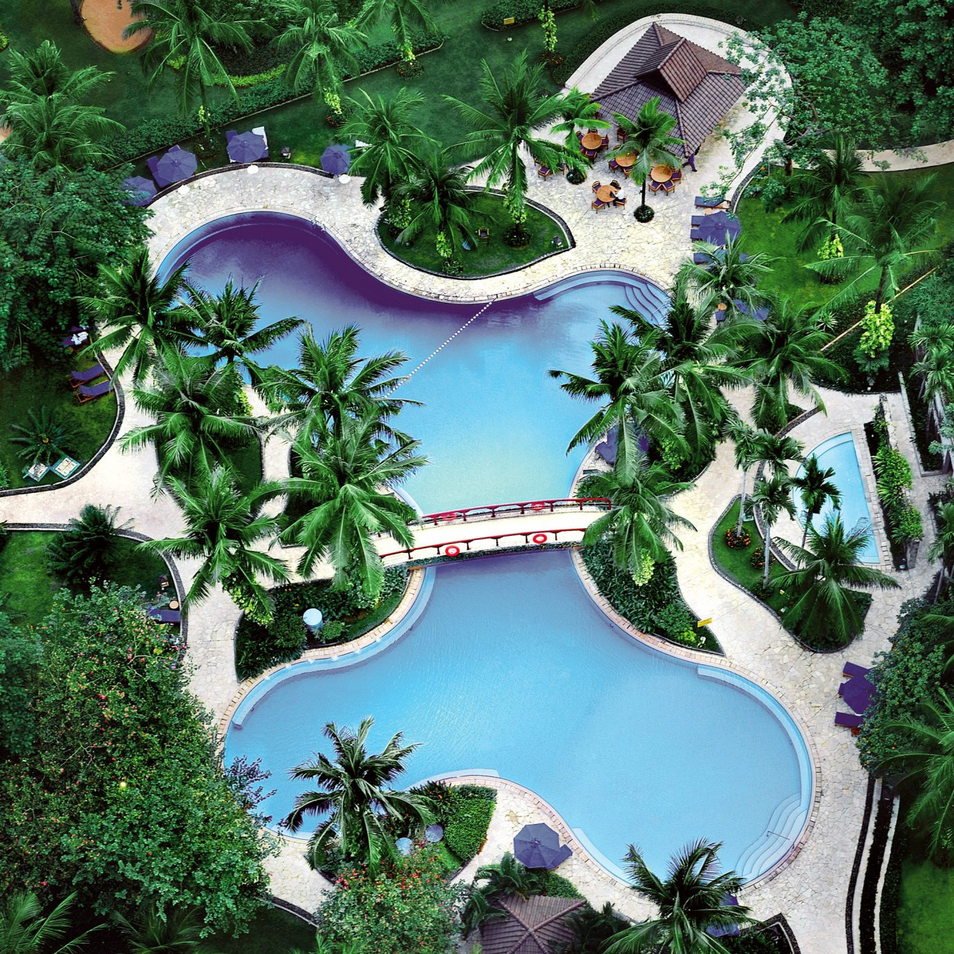 All-inclusive Hot tub/Jacuzzi Luxury Pool tree text plant ecosystem botany Garden mansion Resort Jungle screenshot backyard park amusement park biome surrounded