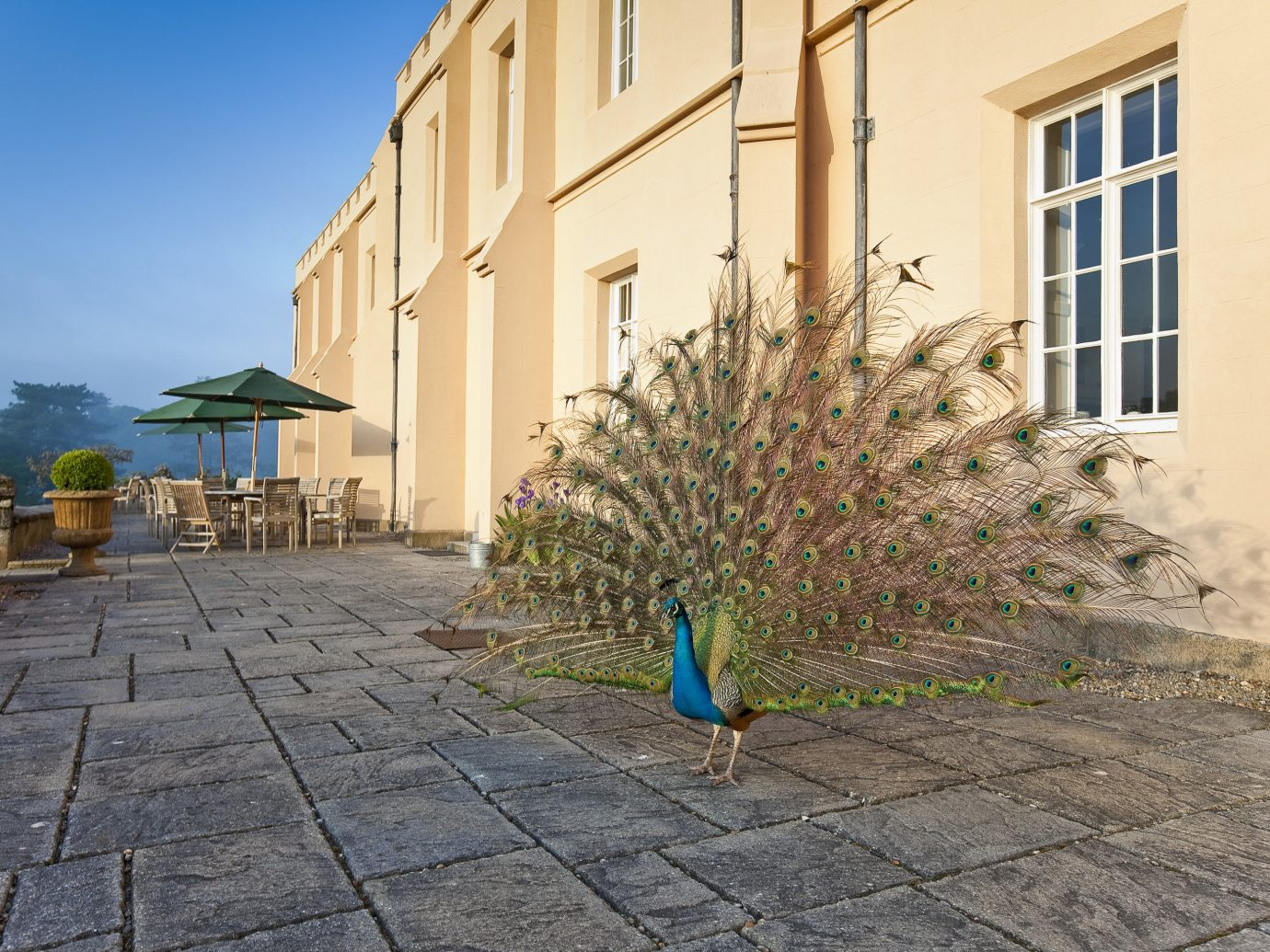Hotels building ground outdoor property walkway wall estate house Courtyard residential area home facade way sidewalk apartment stone