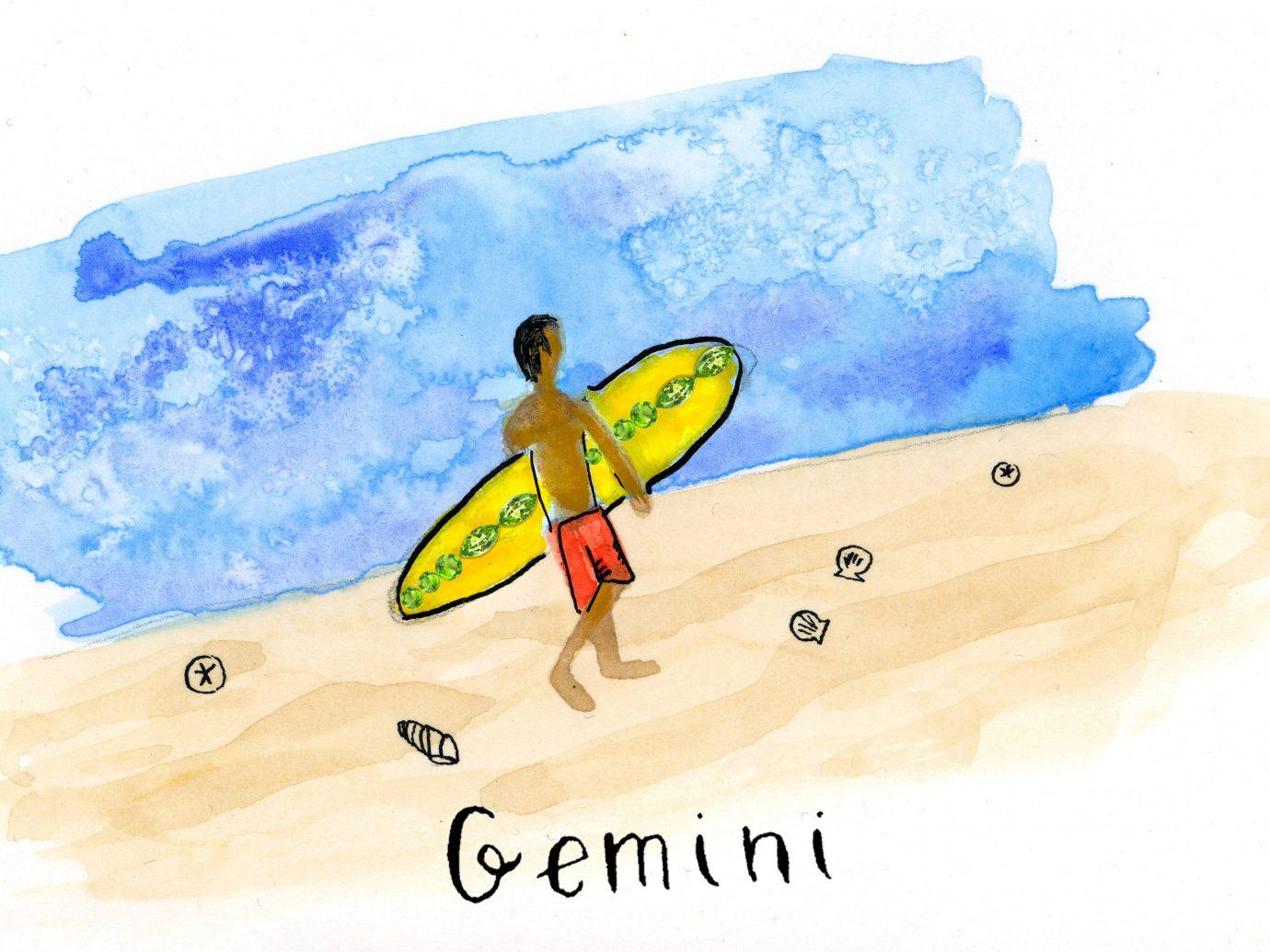 Trip Ideas cartoon surfing equipment and supplies illustration flightless bird surfboard