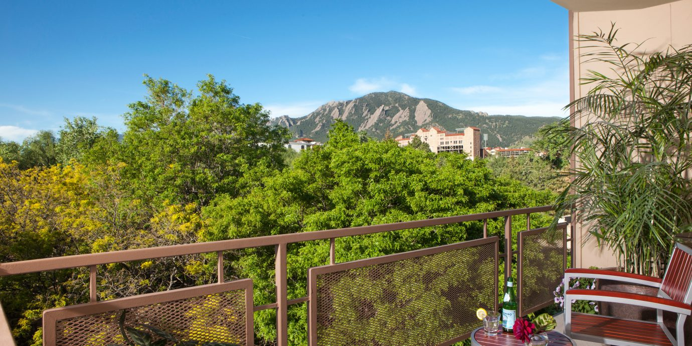 Balcony City tree sky chair property building Resort flower Villa Garden