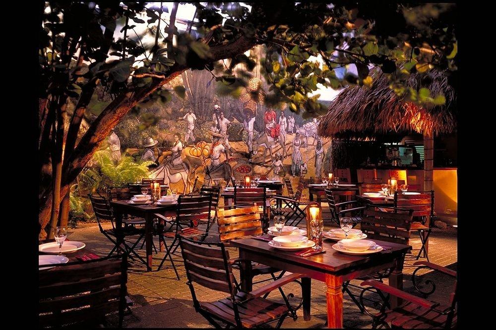 Bar Dining Drink Eat Exterior Nightlife Romantic tree restaurant lighting set