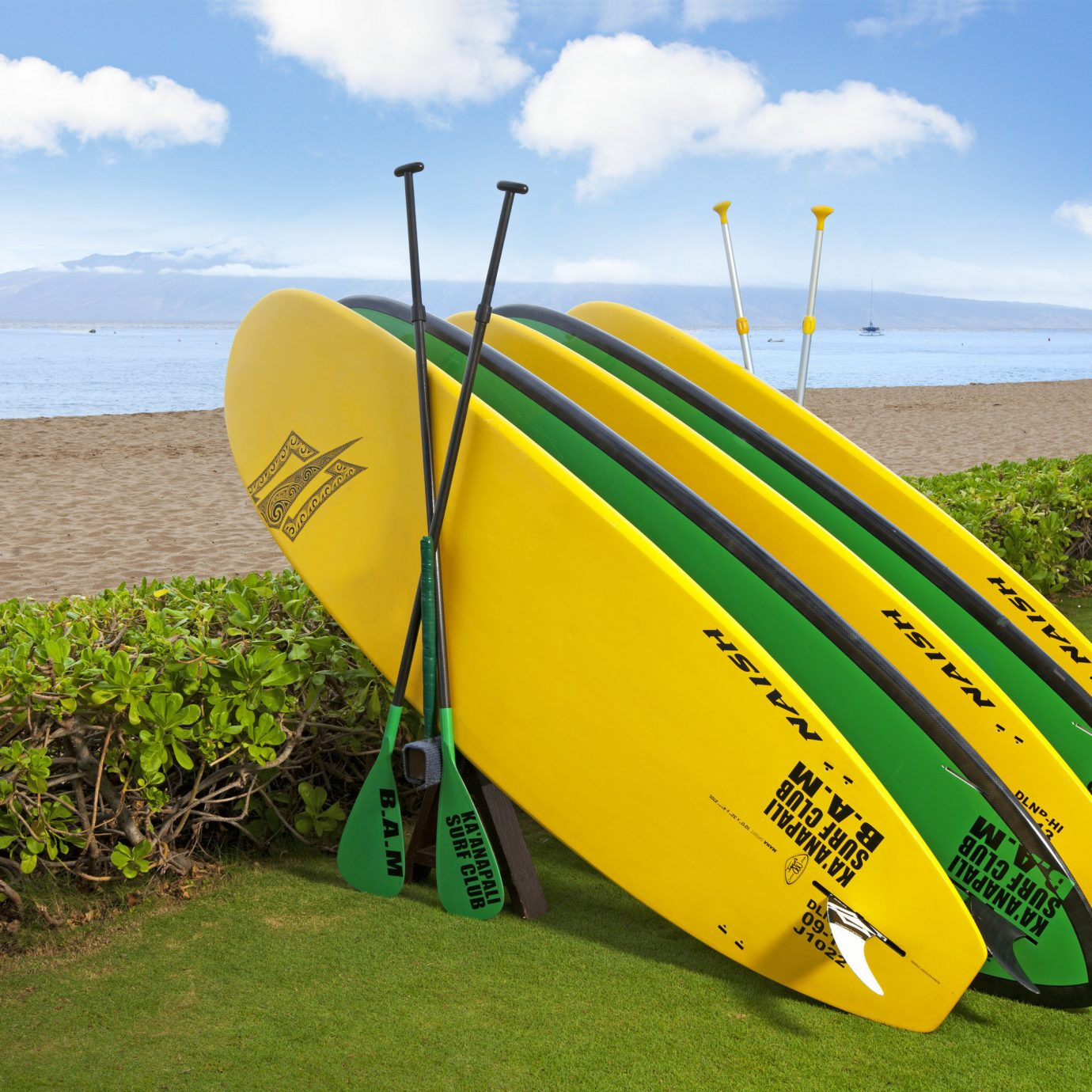 sky surfing grass umbrella green yellow Beach board surfboard accessory surfing equipment and supplies sports atmosphere of earth vehicle wind paddle Boat Sea sports equipment shore