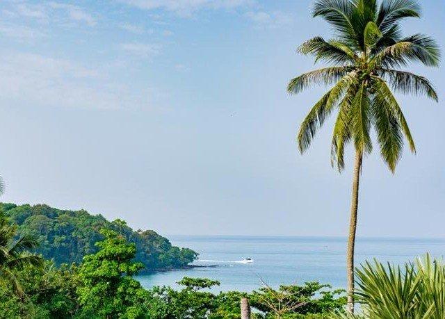 tree sky water palm vegetation Coast ecosystem caribbean flora plant palm family Beach shore Sea tropics arecales woody plant Ocean land plant Nature Island Jungle flower sandy