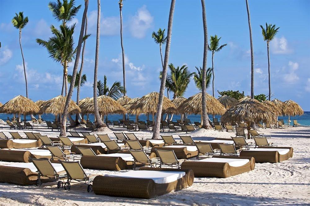 sky tree chair Beach Resort marina Sea shore palm dock arecales Ocean Coast sandy lined Lagoon line day