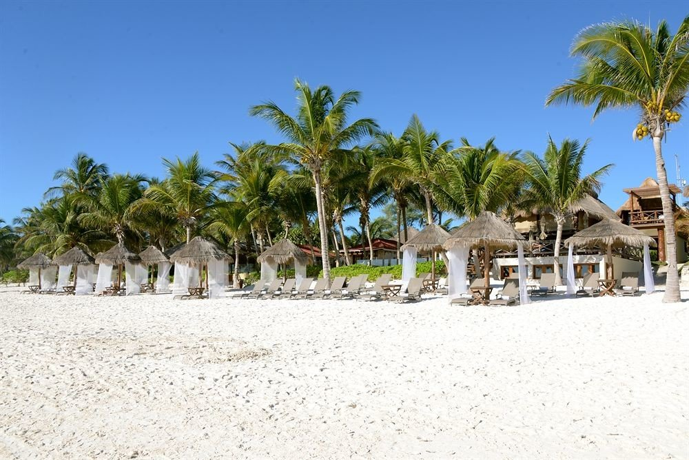 tree sky ground Beach palm Resort arecales Sea caribbean Coast plant walkway Lagoon sandy Village shade