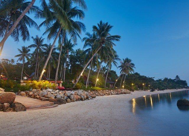 tree sky water palm Beach Resort arecales swimming pool palm family caribbean plant Coast Sea Lagoon shore lined sandy