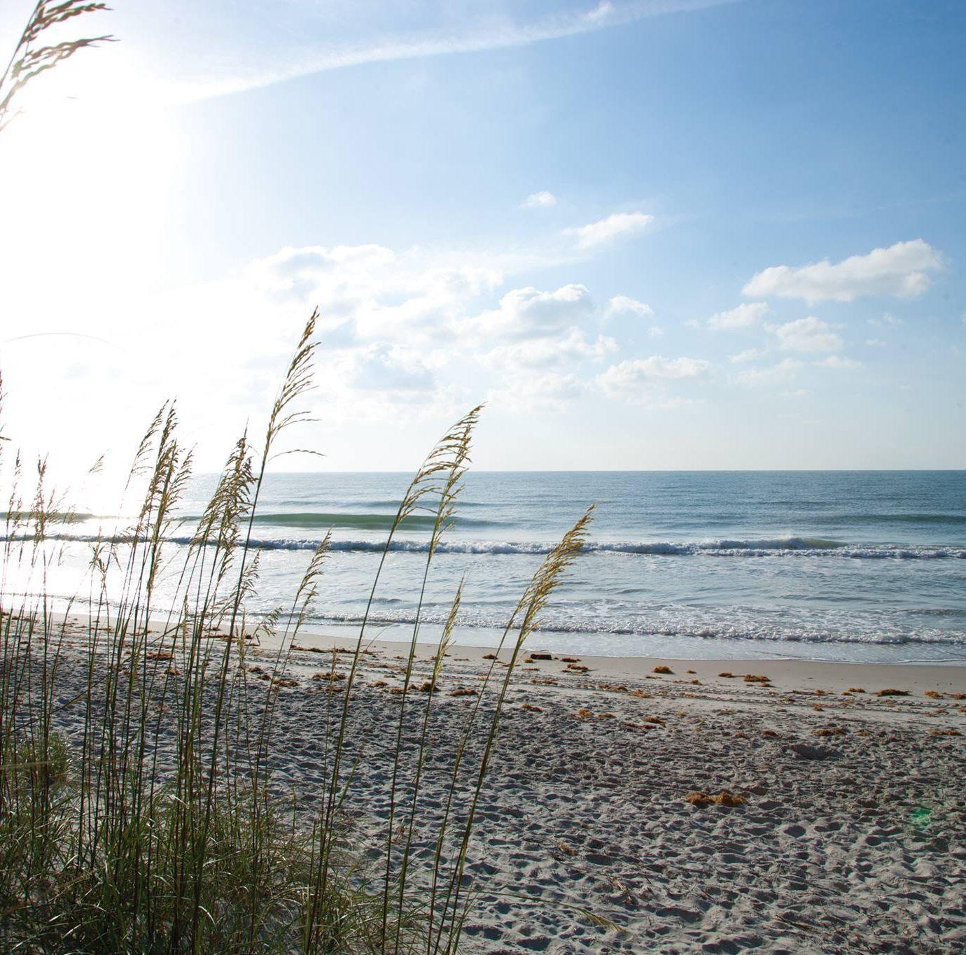 sky habitat shore Beach Sea horizon water Ocean Coast cloud wave morning Nature sunlight sand wind