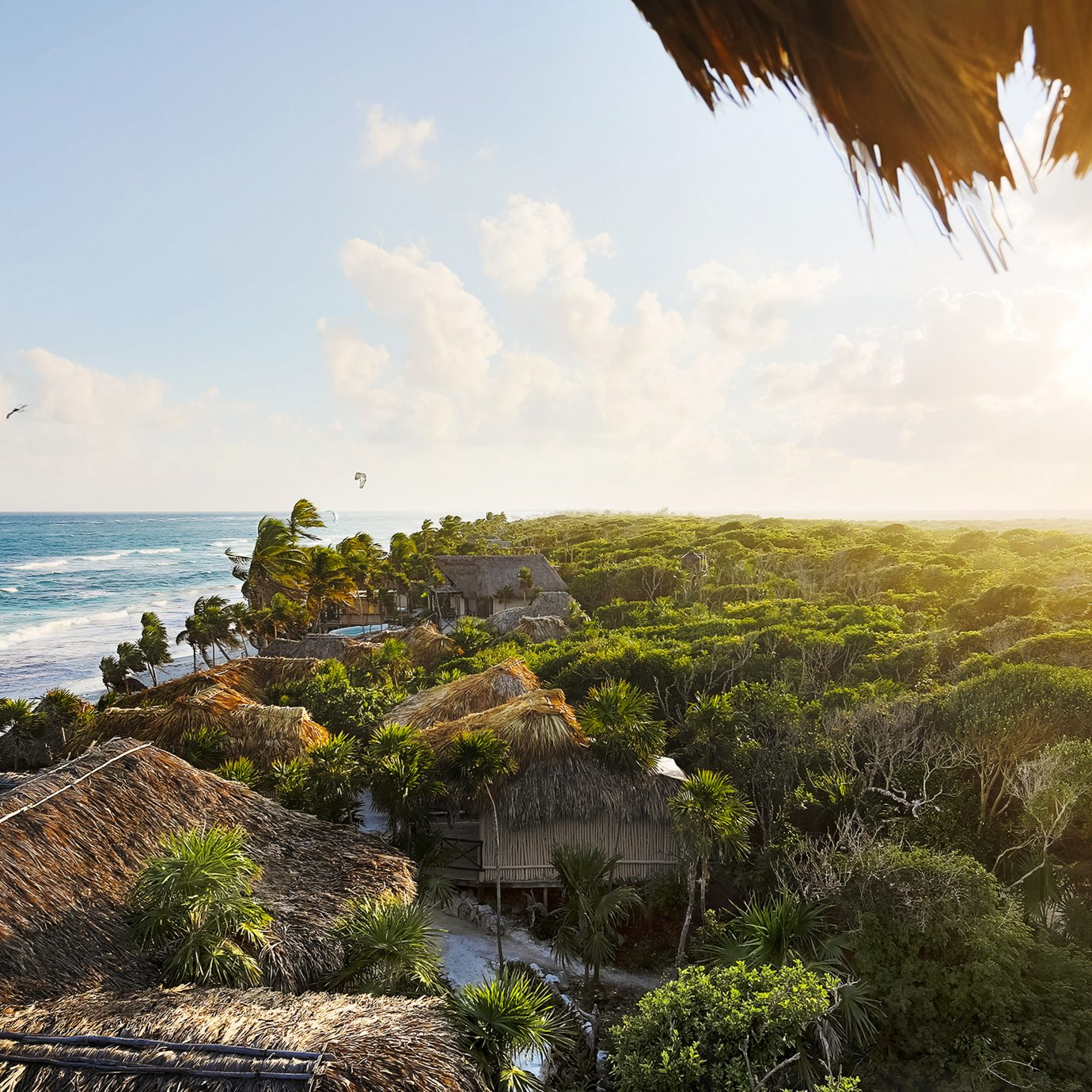 Beachfront Eco Grounds Hotels Island sky Nature Coast Sea tree ecosystem horizon Ocean shore morning rock sunlight landscape cliff terrain arecales tropics