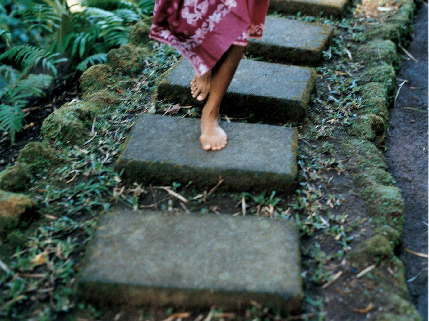 Health + Wellness Hotels Spa Retreats outdoor green Garden flower stone