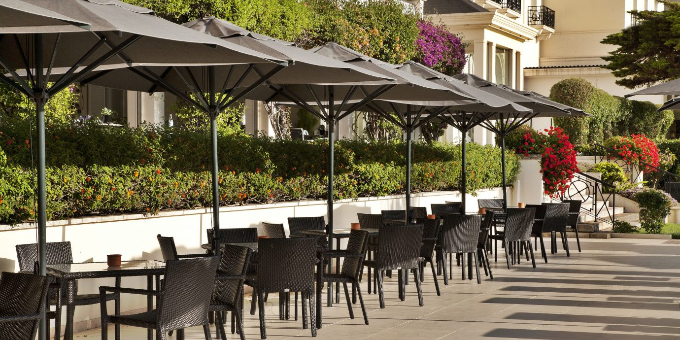 tree chair restaurant plaza walkway outdoor structure flower lined