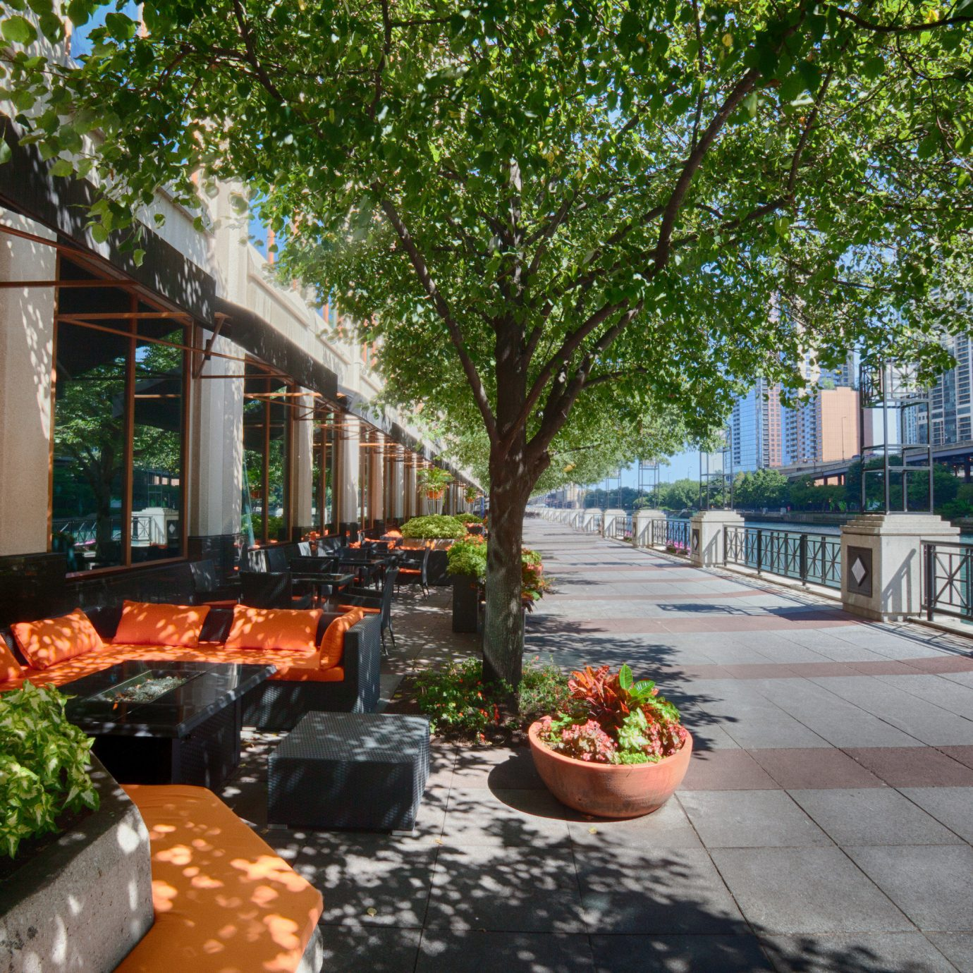 tree property Courtyard backyard walkway yard home residential area condominium Garden Resort outdoor structure