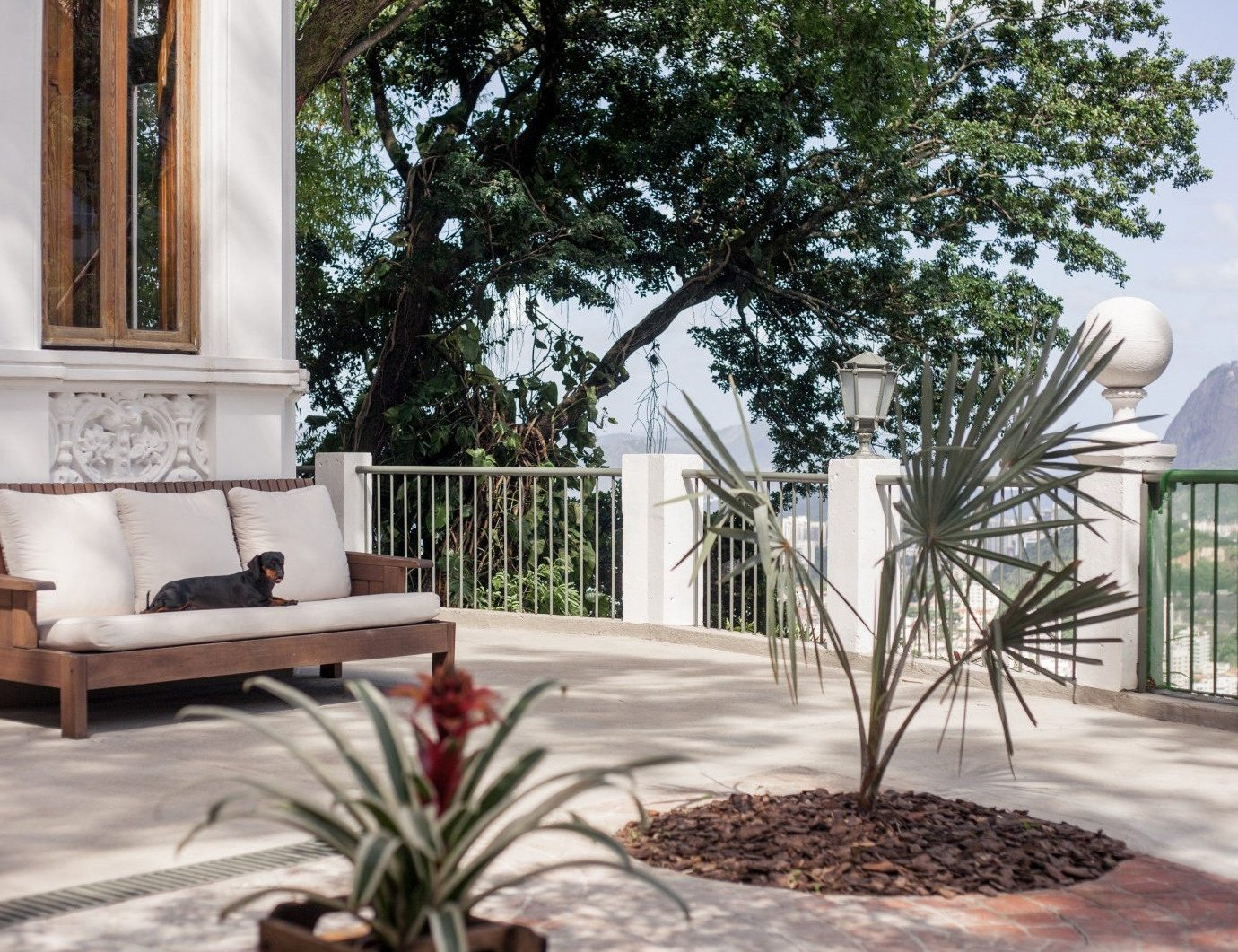 tree property home house backyard Courtyard porch Villa outdoor structure plant cottage yard mansion Garden