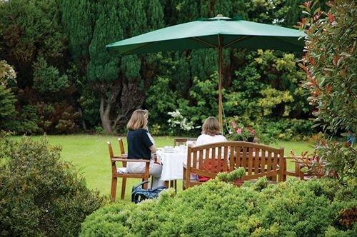 tree Garden gazebo backyard park cottage outdoor structure porch Deck Forest lush