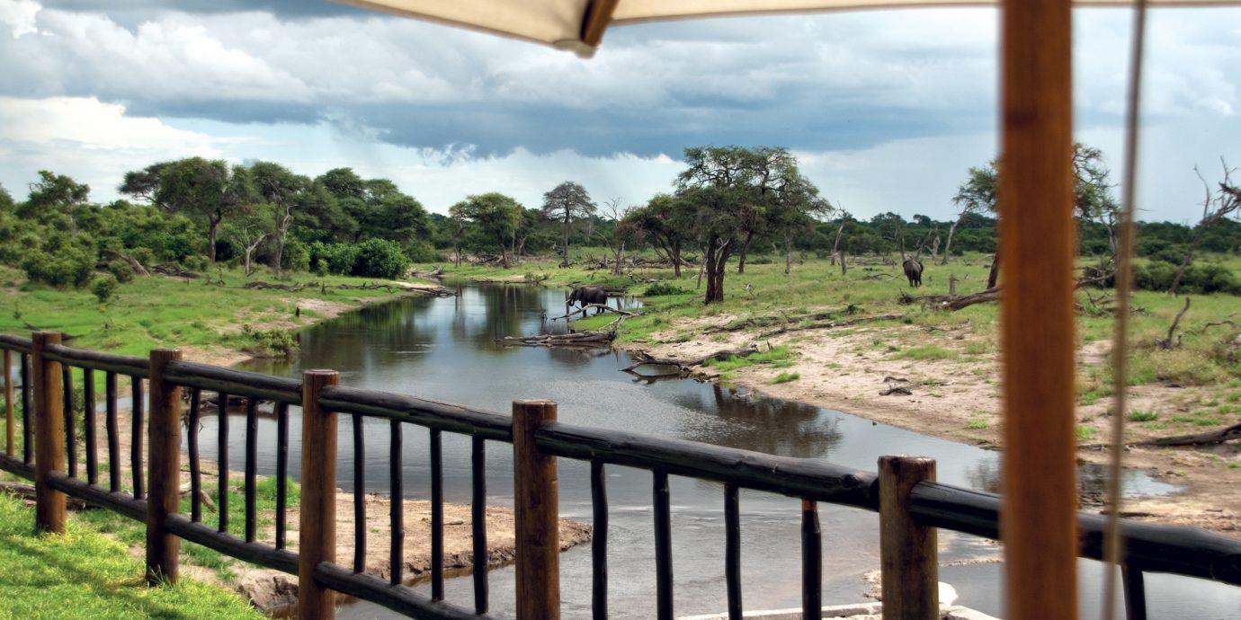 Jungle Lodge Natural wonders Safari Scenic views sky grass Resort cottage Villa Deck shore