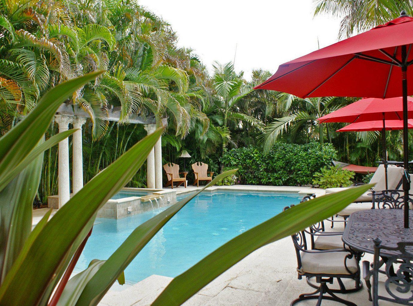 Lounge Luxury Pool tree chair umbrella leisure plant Dining Resort arecales green swimming pool tropics lawn backyard Villa caribbean sunny flower palm shade set accessory