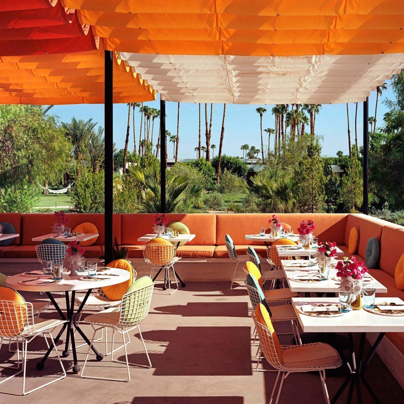 tree umbrella chair restaurant Dining Resort function hall orange set