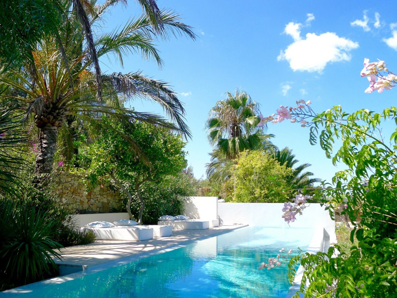 Boutique Hotels Hotels Luxury Travel Meditation Retreats Spa Retreats Trip Ideas Yoga Retreats tree outdoor swimming pool property Resort arecales palm tree leisure water estate tropics real estate water feature caribbean vacation resort town Pool sky landscape plant landscaping surrounded