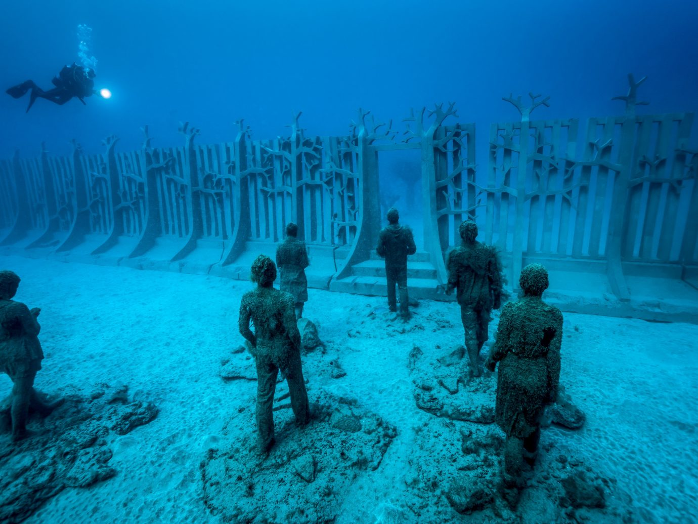 Arts + Culture Offbeat Scuba Diving + Snorkeling Trip Ideas marine biology underwater biology underwater diving swimming ocean floor