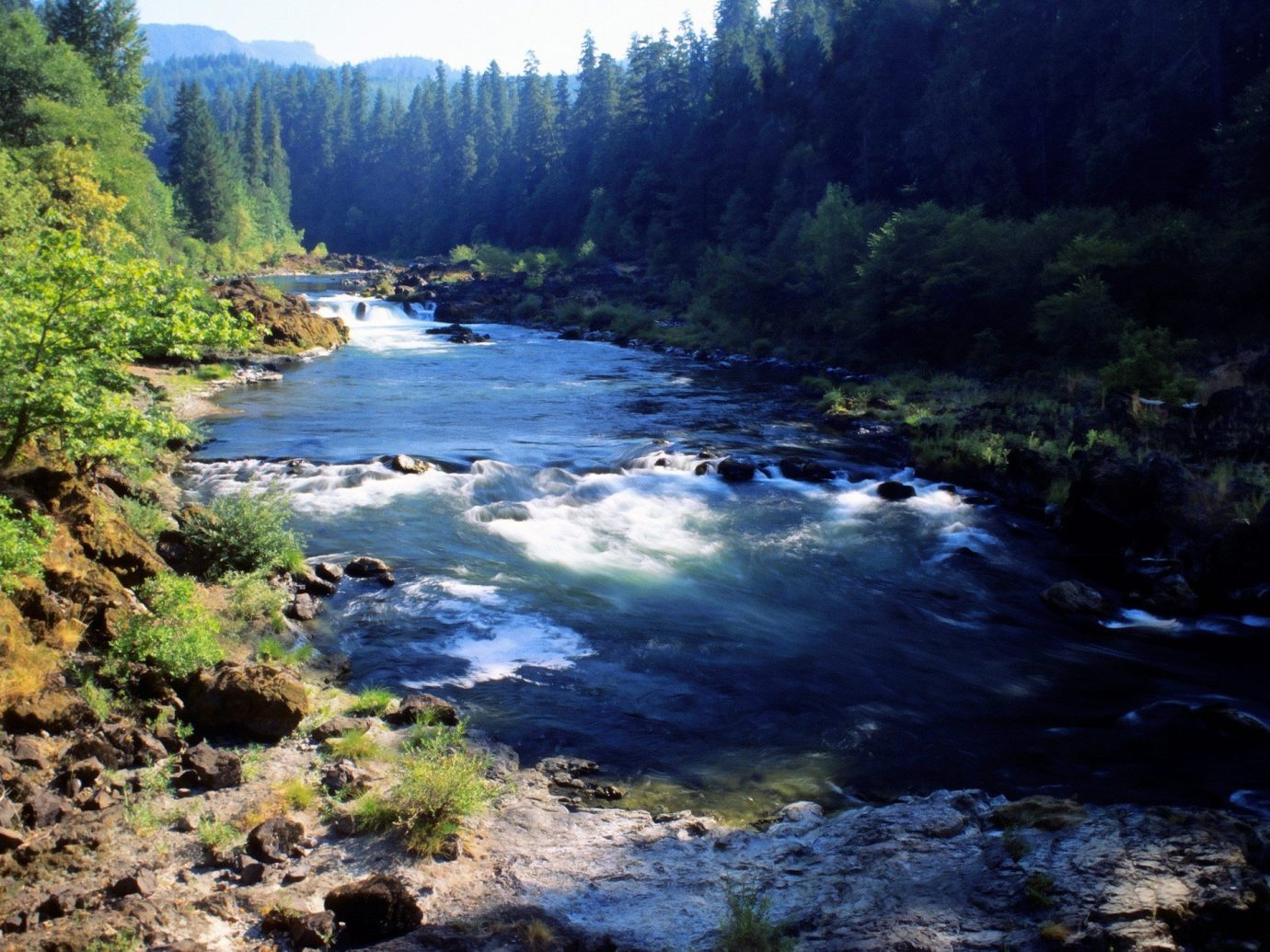 Trip Ideas tree outdoor Nature River landform Forest geographical feature wilderness body of water rapid stream watercourse wooded valley surrounded hillside highland