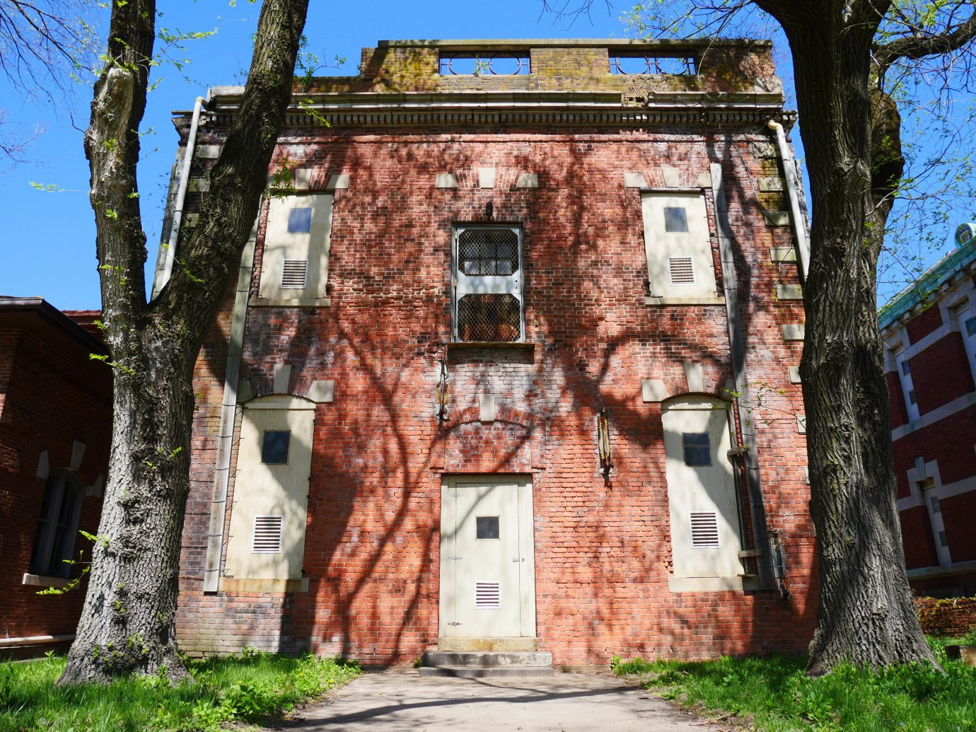 Offbeat tree outdoor building Town neighbourhood house brick urban area Village tourism residential area estate Ruins facade cottage chapel alley