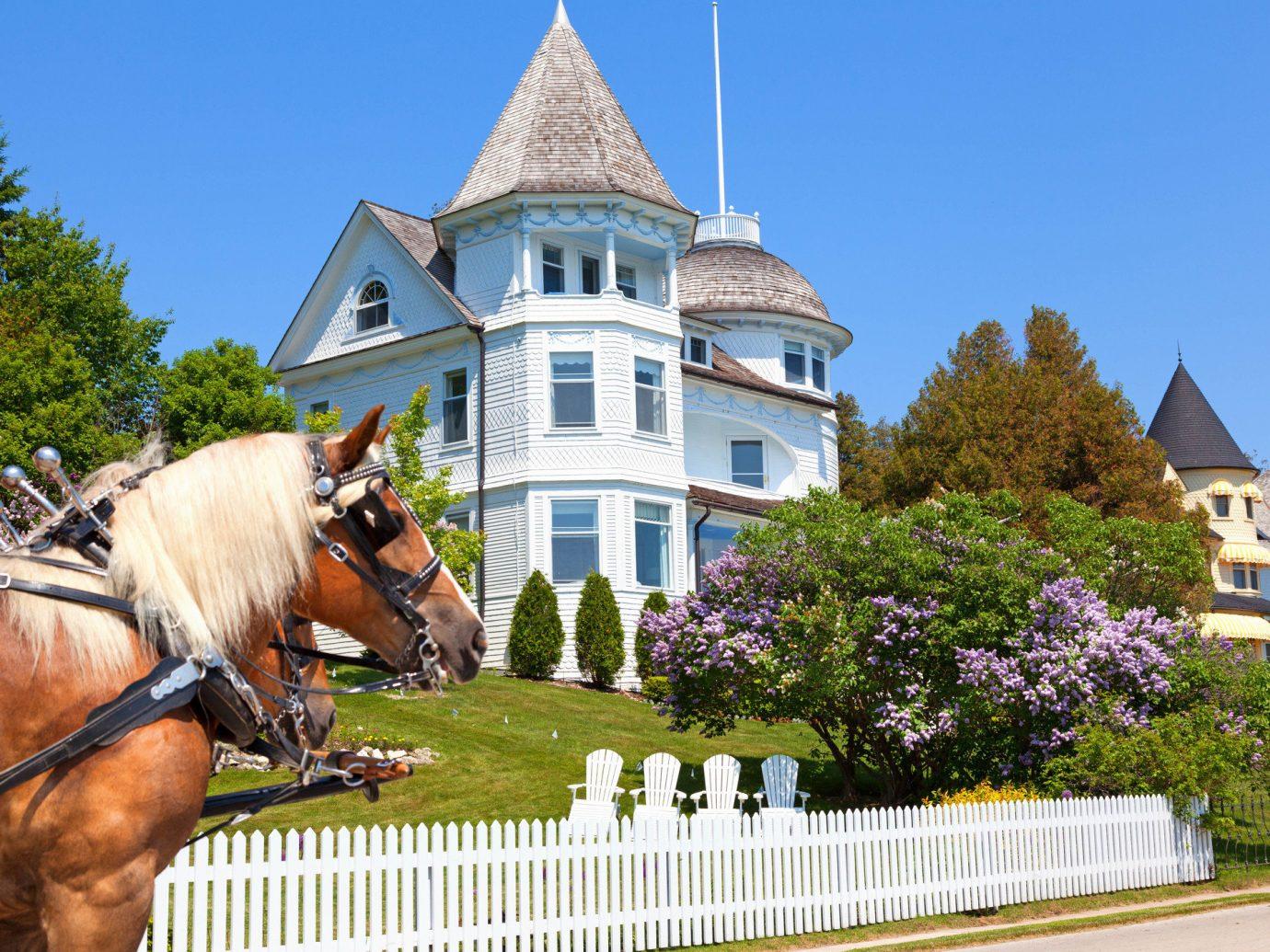 Trip Ideas outdoor sky tree building tourism vacation amusement park estate park place of worship carriage horse