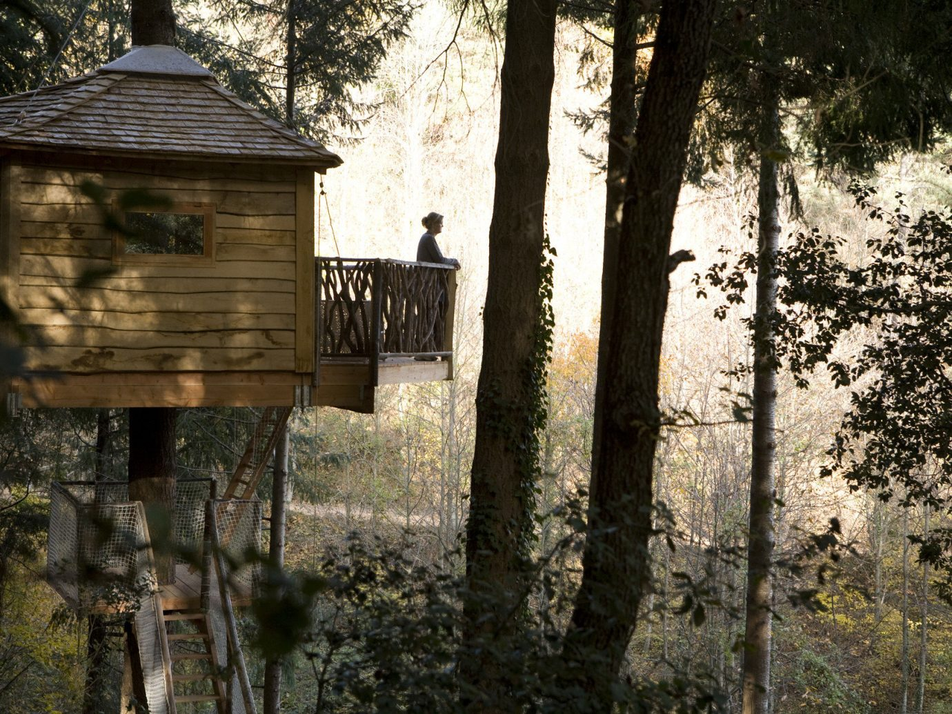 Hotels tree outdoor Nature building house season Forest rural area wood autumn sunlight area wooded surrounded