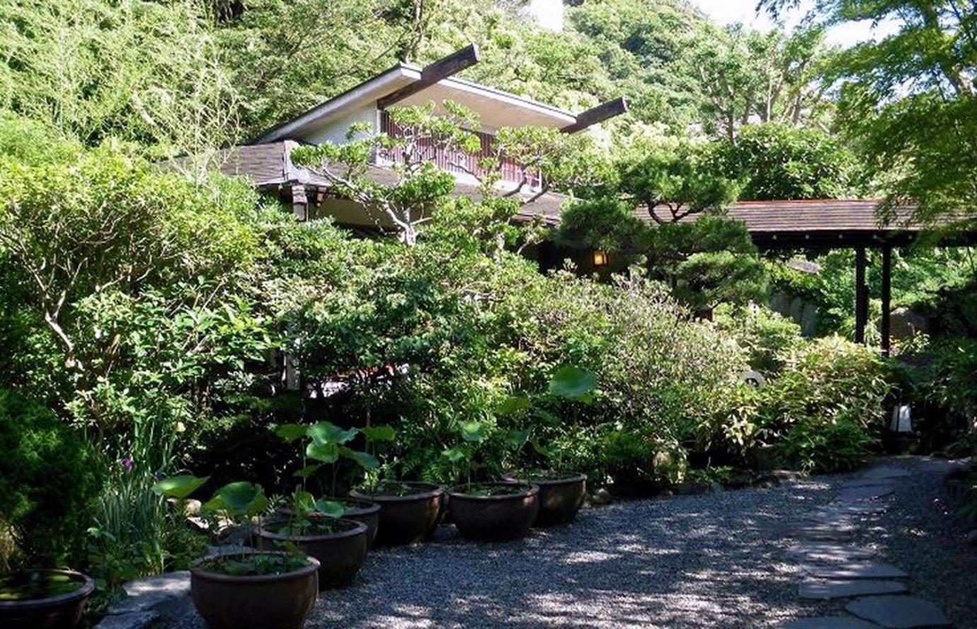 Trip Ideas tree outdoor property building botany Garden plant flower cottage yard estate house shrub backyard botanical garden bushes surrounded