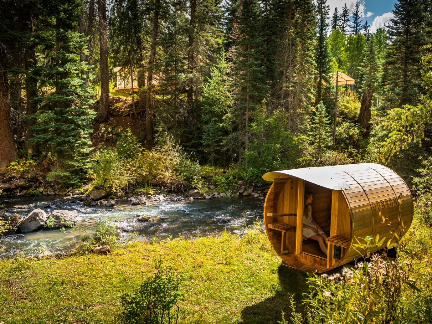 Adventure Country Forest Glamping Grounds Luxury Travel Mountains Rustic Scenic views Trip Ideas Wellness tree outdoor grass habitat Nature wilderness natural environment ecosystem woodland season wooded autumn Jungle wood stream trail rainforest surrounded lush