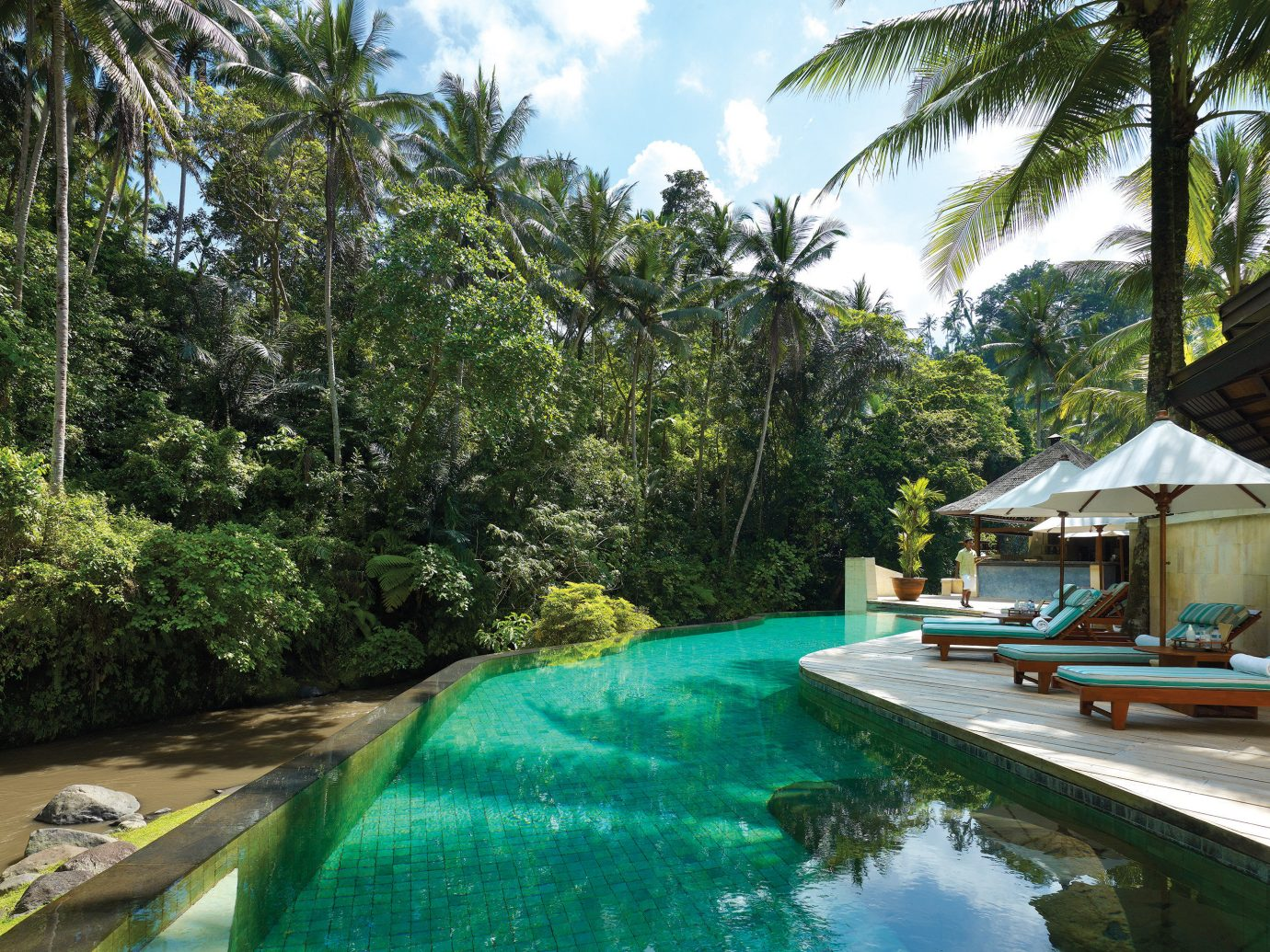 Health + Wellness Honeymoon Hotels Jungle Luxury Pool Style + Design tree outdoor water swimming pool leisure property Resort vacation estate backyard Villa tropics plant traveling pond Forest surrounded