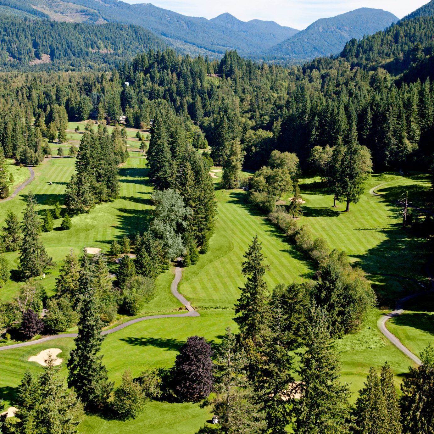 Forest Mountains Natural wonders Nature Outdoor Activities Outdoors Scenic views tree mountain grass ecosystem aerial photography mountain range valley green biome lush temperate coniferous forest plateau plant meadow conifer hillside wooded surrounded