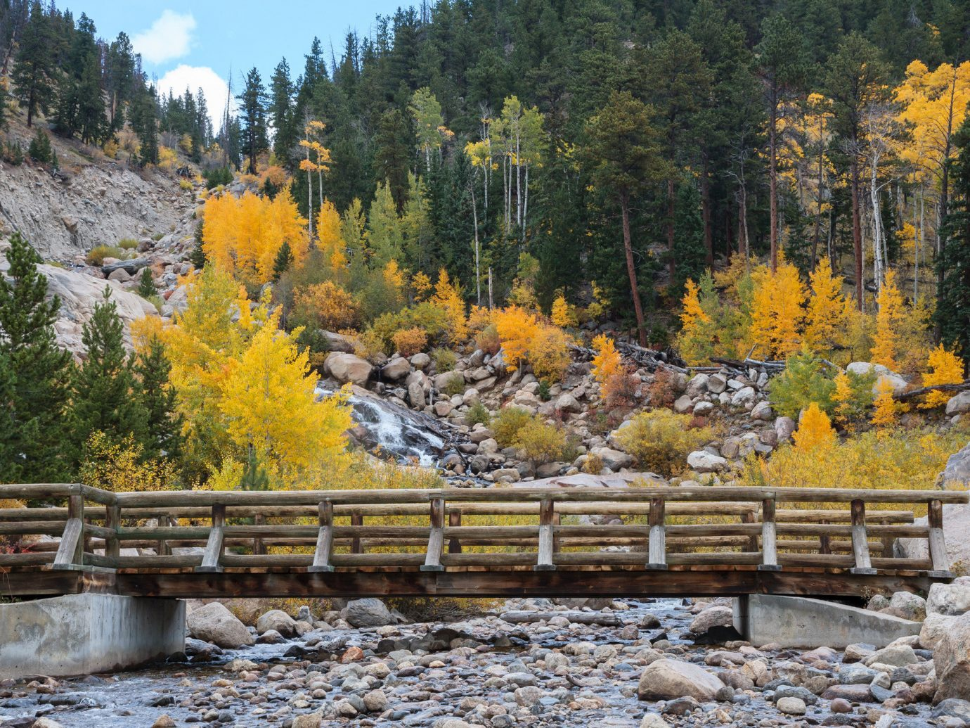 Outdoors + Adventure Road Trips Trip Ideas tree outdoor bench Nature leaf wilderness autumn plant park geological phenomenon water wooden landscape stream larch rock Winter national park watercourse wood mountain state park creek stream bed River Forest wooded stone