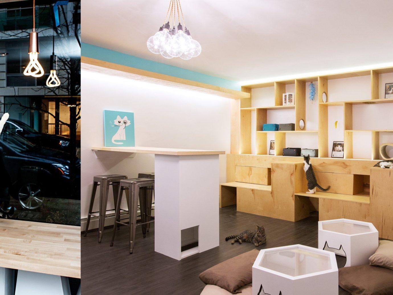 Offbeat floor indoor room property ceiling Living home interior design living room Design real estate condominium estate apartment furniture