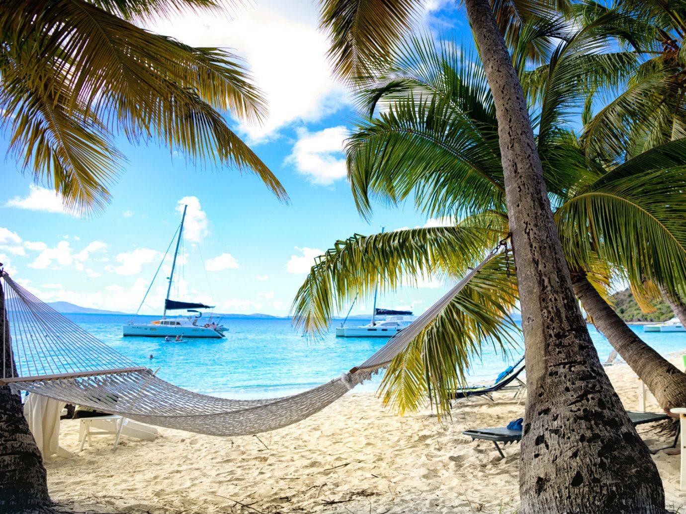 Hotels Trip Ideas tree palm outdoor Beach water plant caribbean vacation tropics Sea hammock arecales Ocean Resort Pool palm family swimming pool Jungle sandy shade lined