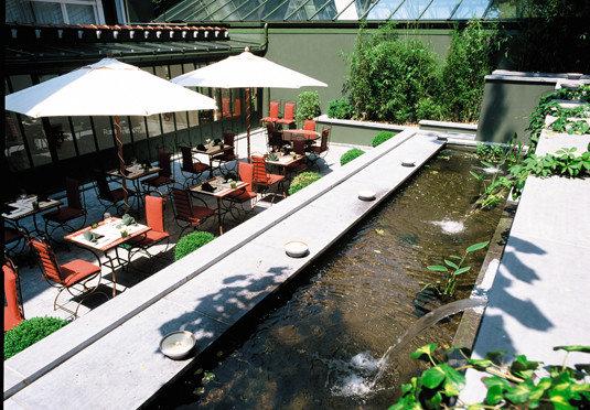 swimming pool backyard roof Garden