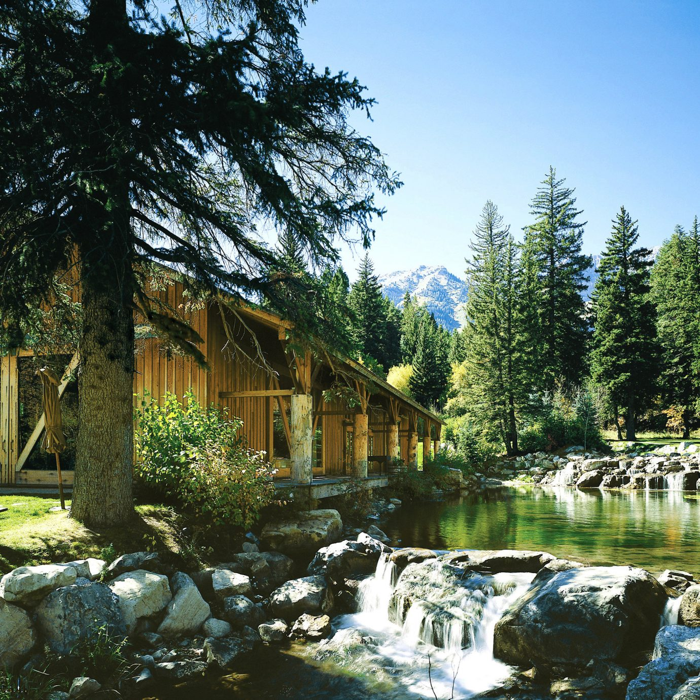 Grounds Mountains Outdoors Scenic views Wildlife tree Garden pond River woodland stream backyard flower plant surrounded stone
