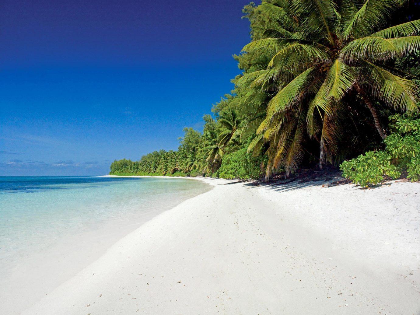 Secret Getaways Trip Ideas outdoor water Beach Nature landform tree body of water Coast Sea shore Ocean vacation tropics bay arecales Island sand