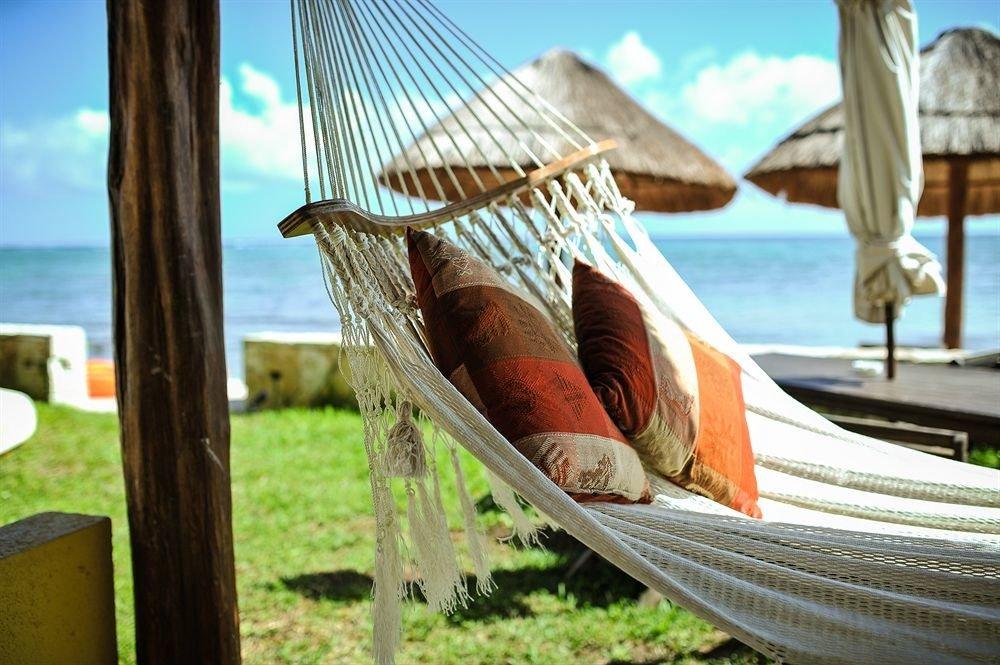 sky grass leisure hammock