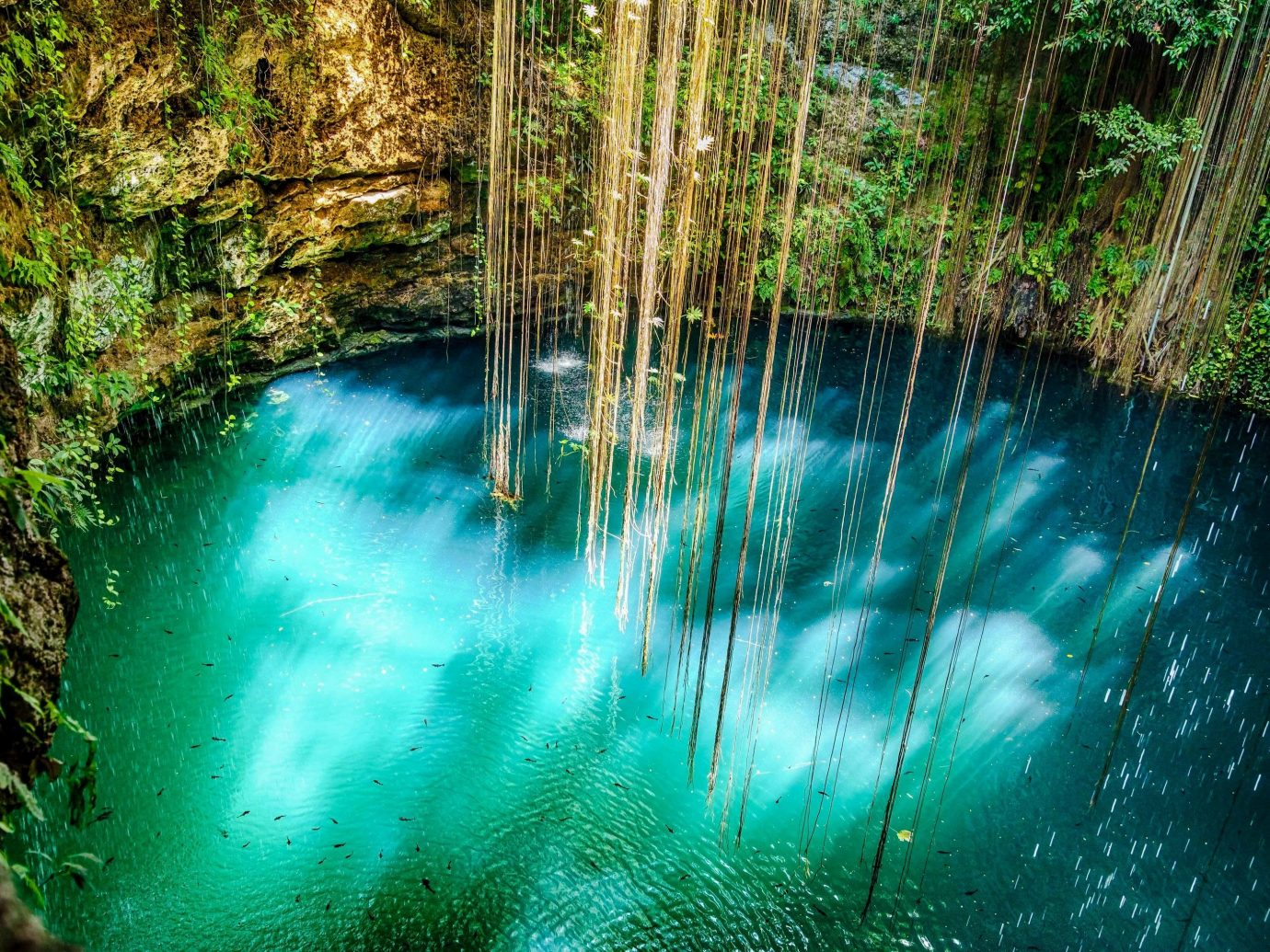 Hotels Trip Ideas water Nature green body of water vegetation water resources Waterfall nature reserve watercourse water feature reflection stream tree Forest landscape Jungle River formation grass rainforest pond old growth forest mineral spring creek tributary