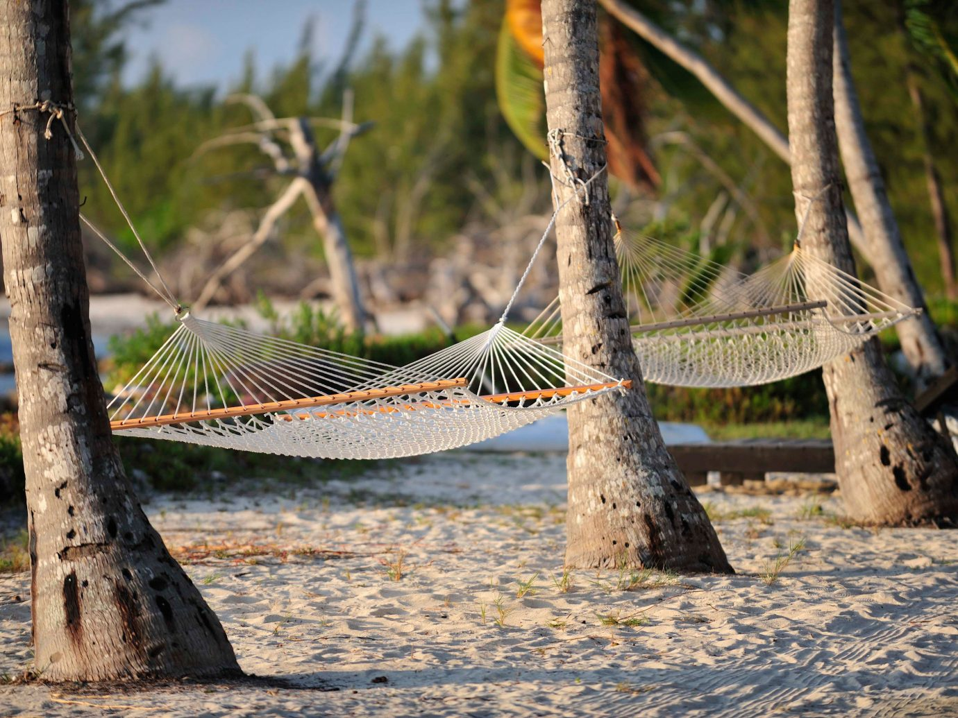 Hammock on the beach at Small Hope Bay Lodge
