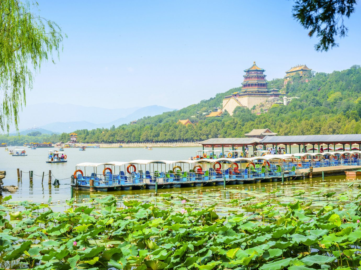 Trip Ideas outdoor sky tree grass River tourism vacation rural area Coast agriculture Sea vehicle flower traveling