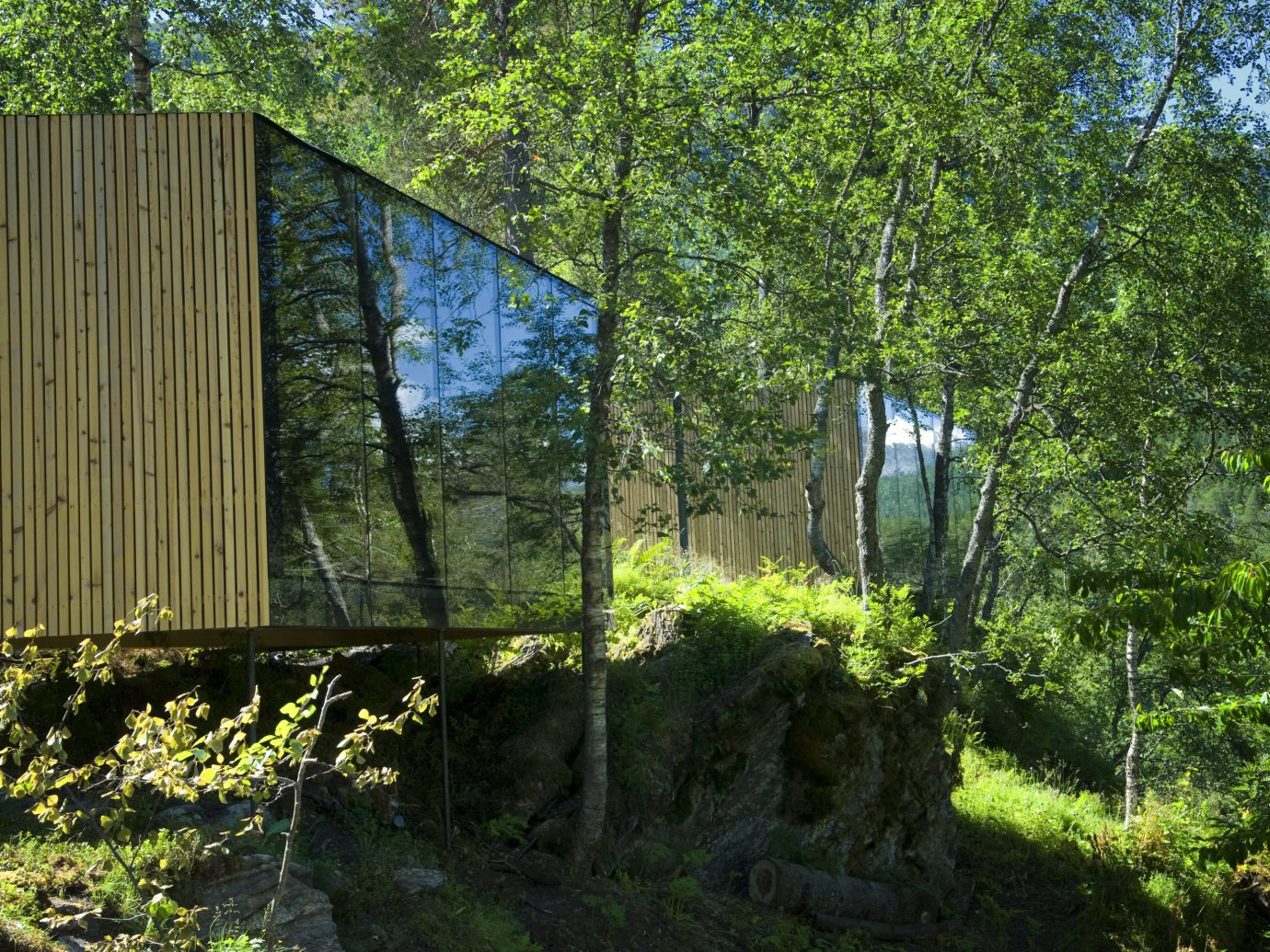 Design Hotels tree outdoor Nature vegetation nature reserve house Architecture building leaf biome plant Forest sunlight woodland grass real estate landscape outdoor structure facade Jungle cottage grass family Garden bushes lush wooded surrounded