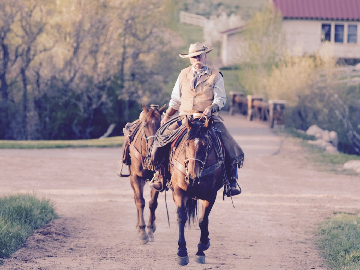 Outdoors + Adventure Trip Ideas Ranch western riding horse pack animal cowboy bridle rein horse like mammal rural area mustang horse stallion gaucho landscape tree mare ecoregion horse tack trail riding wrangler